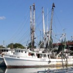 Reduced Cost – AMSEA Commercial Fishing Vessel Drill Conductor Course