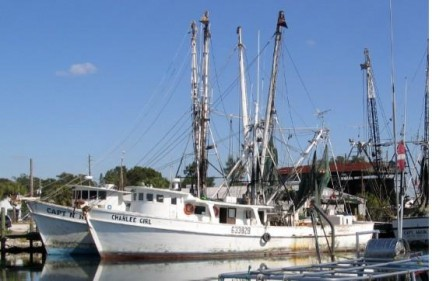 Reduced Cost - AMSEA Commercial Fishing Vessel Drill Conductor Course