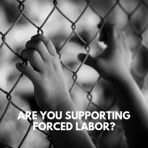Are you supporting forced labor?